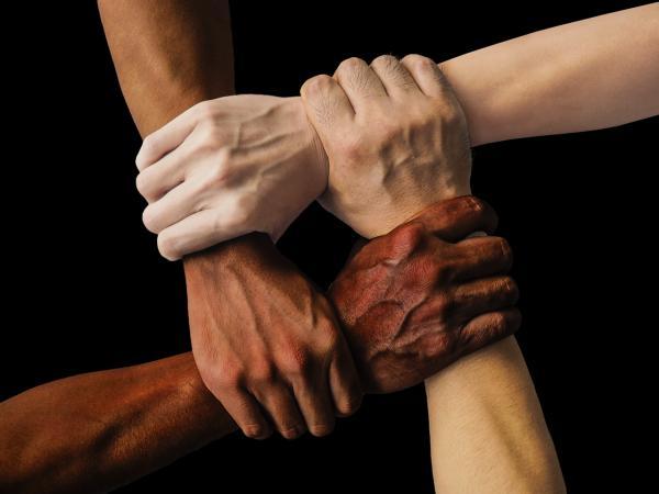 AÇÃO AFIRMATIVA: Autodeclaração de cor ou raça passa a ser obrigatória para inscrição na OAB